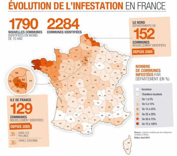 infestation-evolution